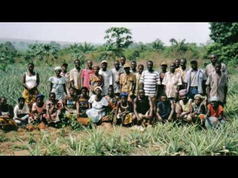 Vie associative des migrants et développement
