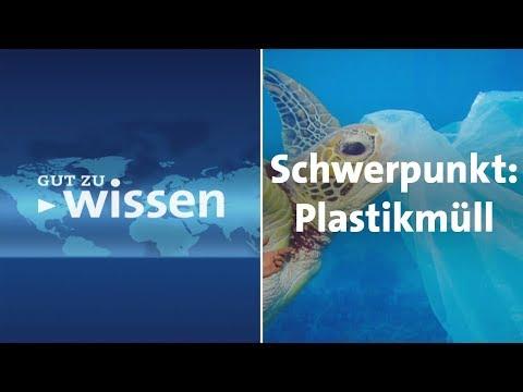 Schwerpunkt Plastikmüll