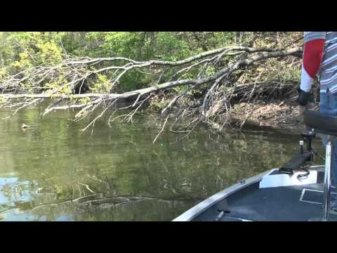 Spring Means Crappie Part 1