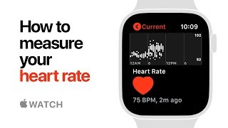 Video Apple Watch Series 4 — How to Measure your Heart Rate — Apple MP3, 3GP, MP4, WEBM, AVI, FLV Juli 2019