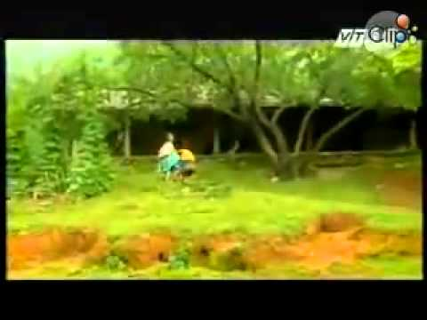 Khám phá du lịch Mộc Châu - Sơn La