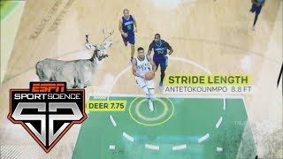 The Science Behind The Greek Freak's Skills | Sport Science | ESPN Archives