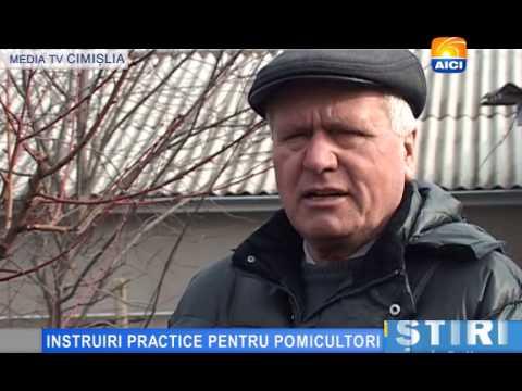 AICI TV  INSTRUIRI PRACTICE PENTRU POMICULTORI