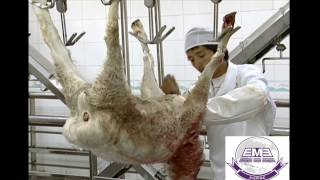 Nonton 2016 Sheep Goat Lamb Abattoir Slaughter Line Ii Equipment Video By Eme Supplier Film Subtitle Indonesia Streaming Movie Download
