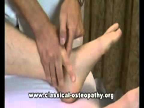 osteopathy - This is the trailer for the 4 DVD box set available to purchase from www.classical-osteopathy.org and www.amazon.co.uk.