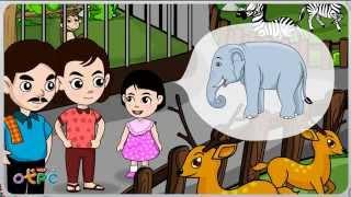 สื่อการเรียนการสอน รู้จักสัตว์ ป.1 วิทยาศาสตร์