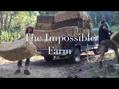 The Impossible Farm - Straw Bale Composting