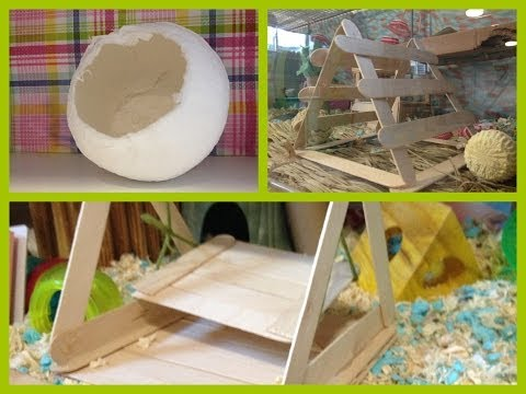 DIY toys for your hamsters