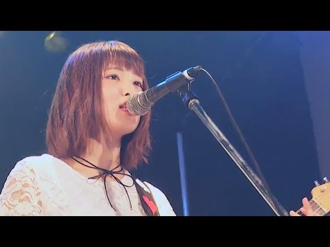 , title : 'ハルウタ / BabySitter -LIVE Music Video-'