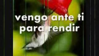 Vengo Ante Ti Por Alejandro Del Bosque:)