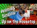 Animals of YouTube sing Up On The Housetop - YouTube