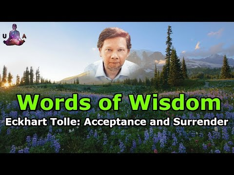 Eckhart Tolle Quotes: Acceptance and Surrender