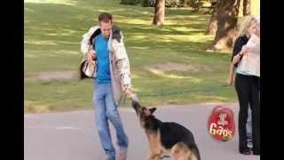JFL Hidden Camera Pranks&Gags: Dog Eat Dog