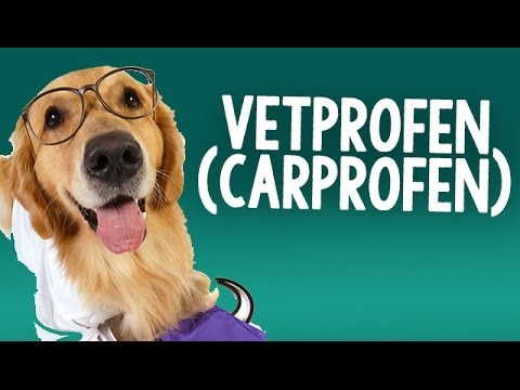 Vetprofen (carprofen) Caplets for use on Dogs with Osteoarthritis