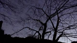 しぶんぎ座流星群 [TIMELAPSE PHOTOGRAPHY]