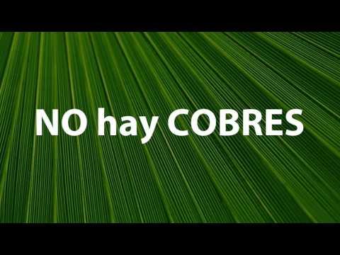 Como Pie de Santo (Lyric Video) - KOQUIMBA 2015