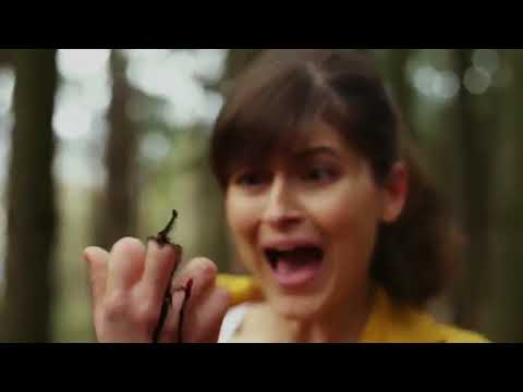 Video Wrong Turn 8 Official Trailer 2018 HD 720p download in MP3, 3GP, MP4, WEBM, AVI, FLV January 2017