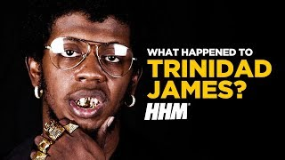 Video What Happened to Trinidad James? MP3, 3GP, MP4, WEBM, AVI, FLV September 2018