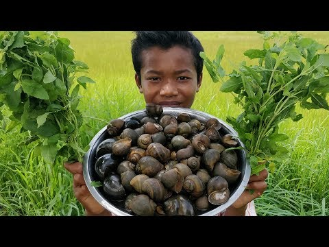 Hot Fry Snail Recipe / Delicious Field Snail Cooking With Basil