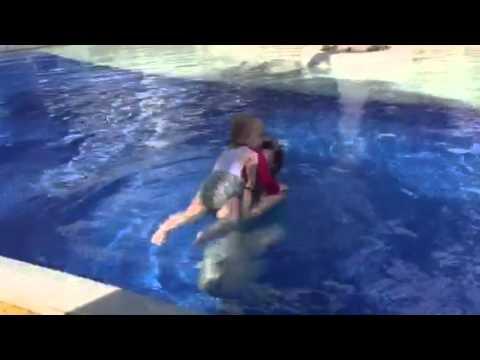 Pool and snacks (видео)
