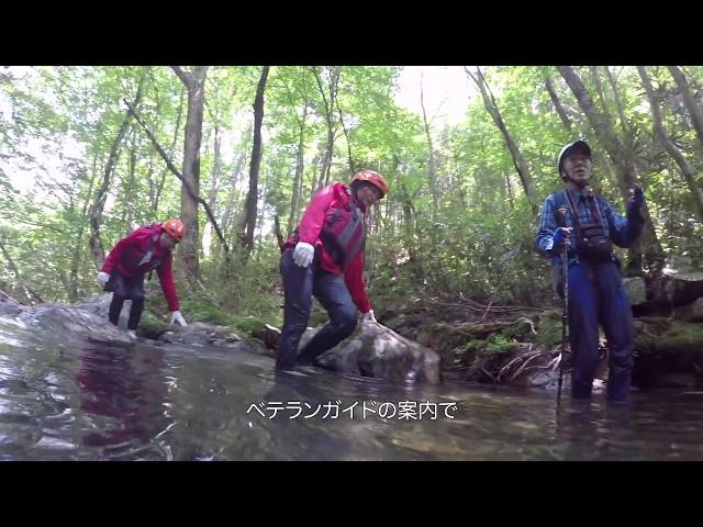 スリルと冒険!感動と驚きの山乗渓谷リバートレッキング