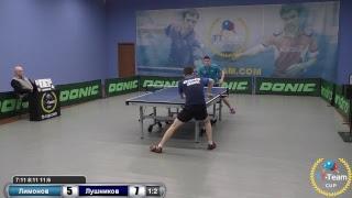Лимонов А. vs Лушников В.
