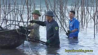 Hoành Bồ kiên quyết trả lại nguyên trạng mặt nước khu vực ven Vịnh Cửa Lục