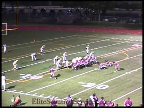 Duke Johnson High School 2010 Highlights video.