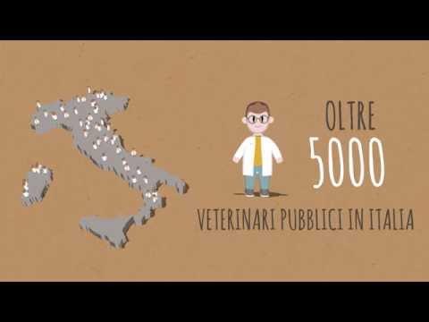 il pollo italiano viene fatto crescere con gli antibiotici?