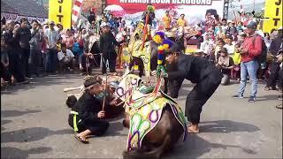 Atraksi kuda renggong silat menggetarkan dunia