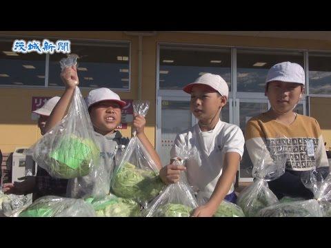 児童が野菜販売体験 鉾田北小 元気に「いらっしゃいませ」