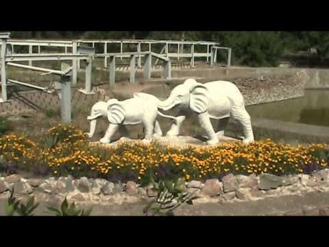Николаевский зоопарк, Украина