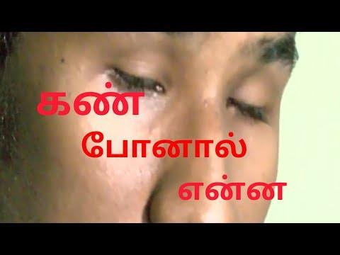 சாதிப்போம்/சிறகடிப்போம்-முயற்சிகள் தோற்காது