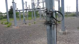 Surprise In The Electrical Substation