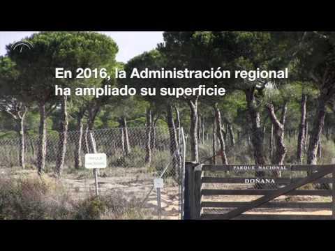 Doñana: El Gas