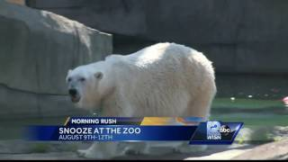 """""""Snooze at the Zoo"""" lets visitors camp out at the Milwaukee County Zoo.Subscribe to WISN on YouTube for more: http://bit.ly/1emE5YXGet more Milwaukee news: http://www.wisn.com/Like us: http://www.facebook.com/wisn12Follow us: http://twitter.com/WISN12News"""