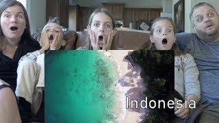 Video REACTION TO WONDERFUL INDONESIA MP3, 3GP, MP4, WEBM, AVI, FLV November 2018