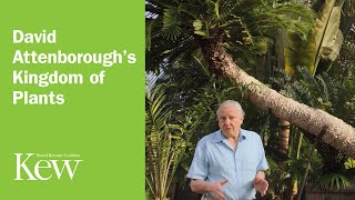 David Attenborough's Kingdom of Plants: Trailer