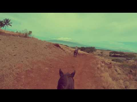 Horseback Riding in Maui 2016
