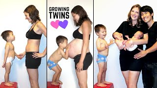 Twin Pregnancy Progression (Stop Motion TIME LAPSE)