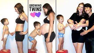 Twin Pregnancy Progression (Stop Motion TIME LAPSE)