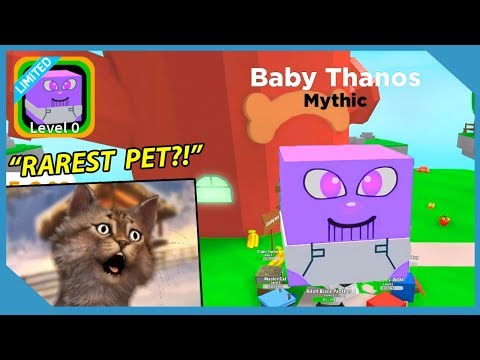 I got the Thanos Pet! - Roblox Pet Paradise (New Pet Simulator)