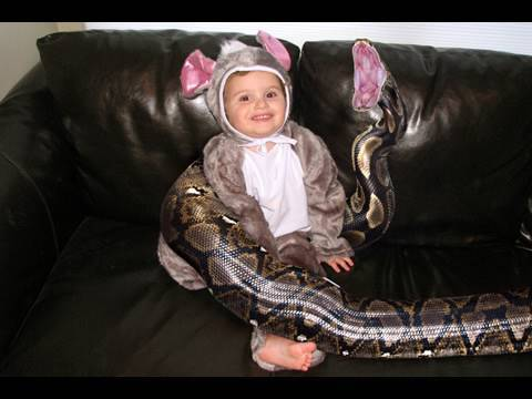 Boys Tragic Death Could Have Happened To Any Family With 20-Foot Pet Python