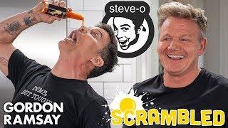 Steve-O Shocks Gordon Ramsay While Making An Southwestern Omelette   Scrambled by Gordon Ramsay