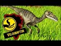 Wildlife Park 3 : Dino Invasion A New Dinosaur Zoo Game
