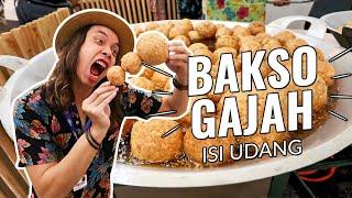 Video BAKSO Goreng isi UDANG sebesar GAJAH!!! MP3, 3GP, MP4, WEBM, AVI, FLV Desember 2018