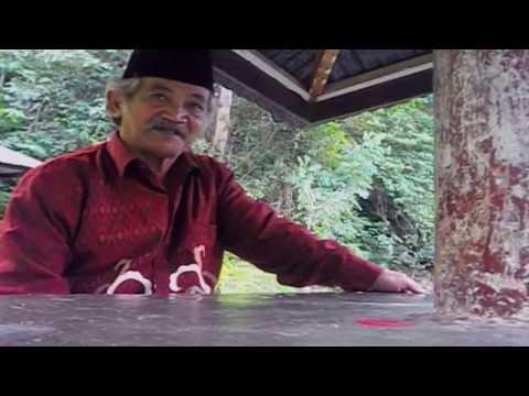Download Video Rimbo Panti Pasaman, West Smatera