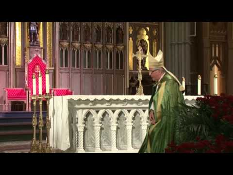 Lectio Divina with Cardinal Thomas Collins - S10E02 - The Law that Guides Us (Exodus 20:1-20)