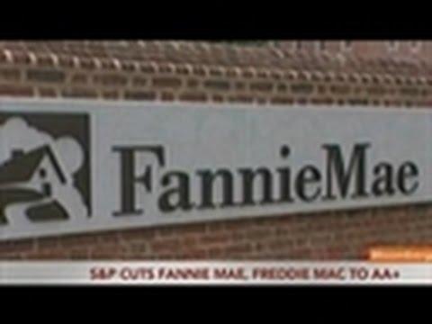 S&P Lowers Fannie Mae, Freddie Mac Credit Ratings