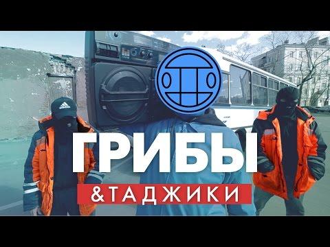 Таджики – Тает Лёд (Грибы Cover)